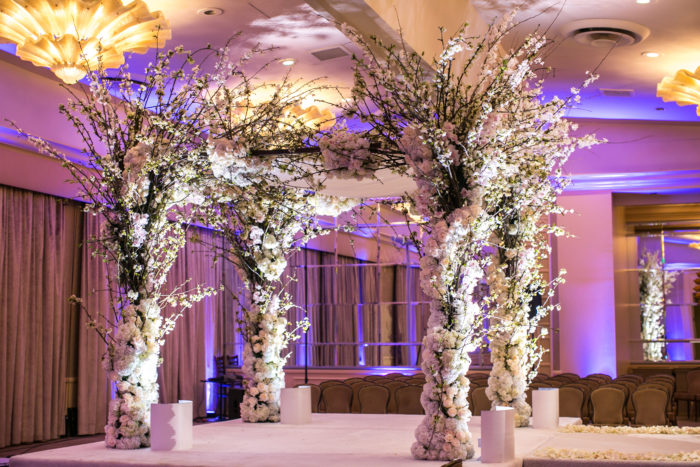 Cherry Blossom and white wedding chuppah with Branches
